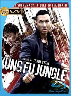 Asesino Kung Fu (2014) HD [1080p] Latino [GoogleDrive] rijoHD