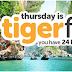 Sốc với vé máy bay Singapore đi Hà Nội 13 nghìn trong khuyến mãi Tiger Flash