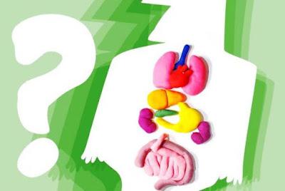 Conselho Federal de Medicina define novas regras para morte encefálica e doação de órgãos