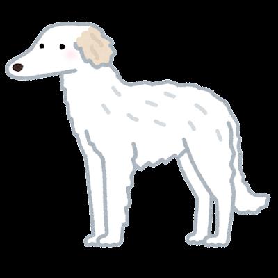 ボルゾイのイラスト(犬)