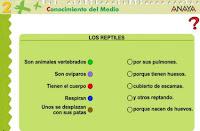http://www.ceiploreto.es/sugerencias/A_1/Recursosdidacticos/SEGUNDO/datos/03_cmedio/03_Recursos/actividades/03/act7.htm