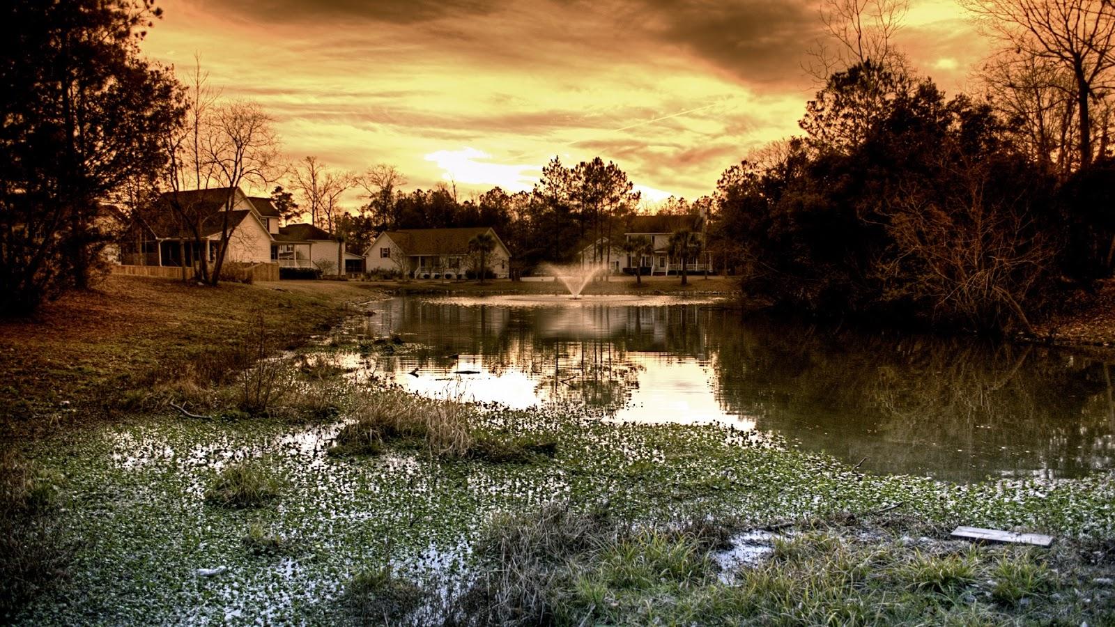 Beautiful Backyard Full Hd Desktop Wallpapers 1080p