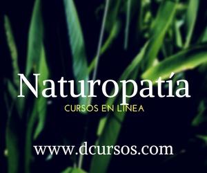 Naturopatia, cursos de masajes  a distancia