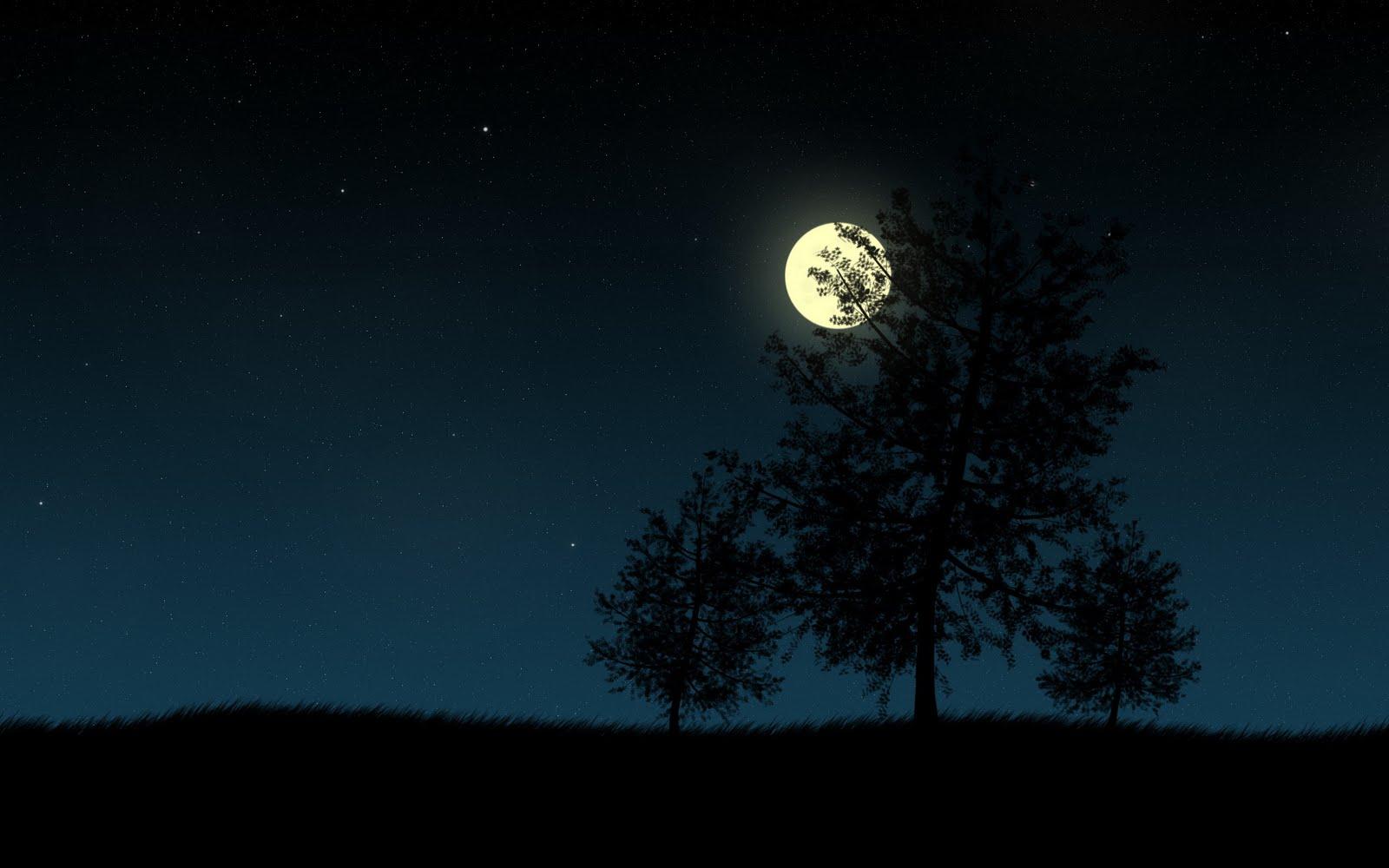 wallpapers full moon night - photo #31