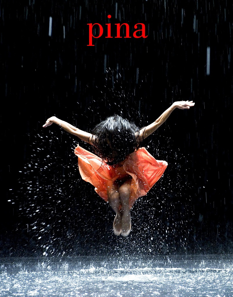 Pina dance film essay