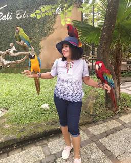 Bali Bird Park Ubud Tour