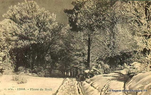 CPA l'Auvergne sous la neige