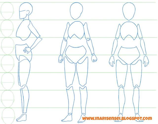 Dessiner un corps manga: les parties rigides du corps humain