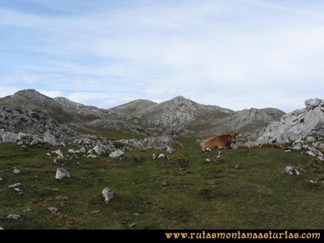 Ruta por el Aramo: Camino del Xistras al Barriscal