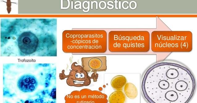 giardia duodenalis diagnostico)