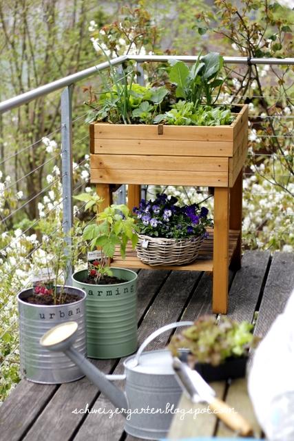 Ein schweizer garten saulenobst in metallfassern und for Garten planen mit balkon treibhaus