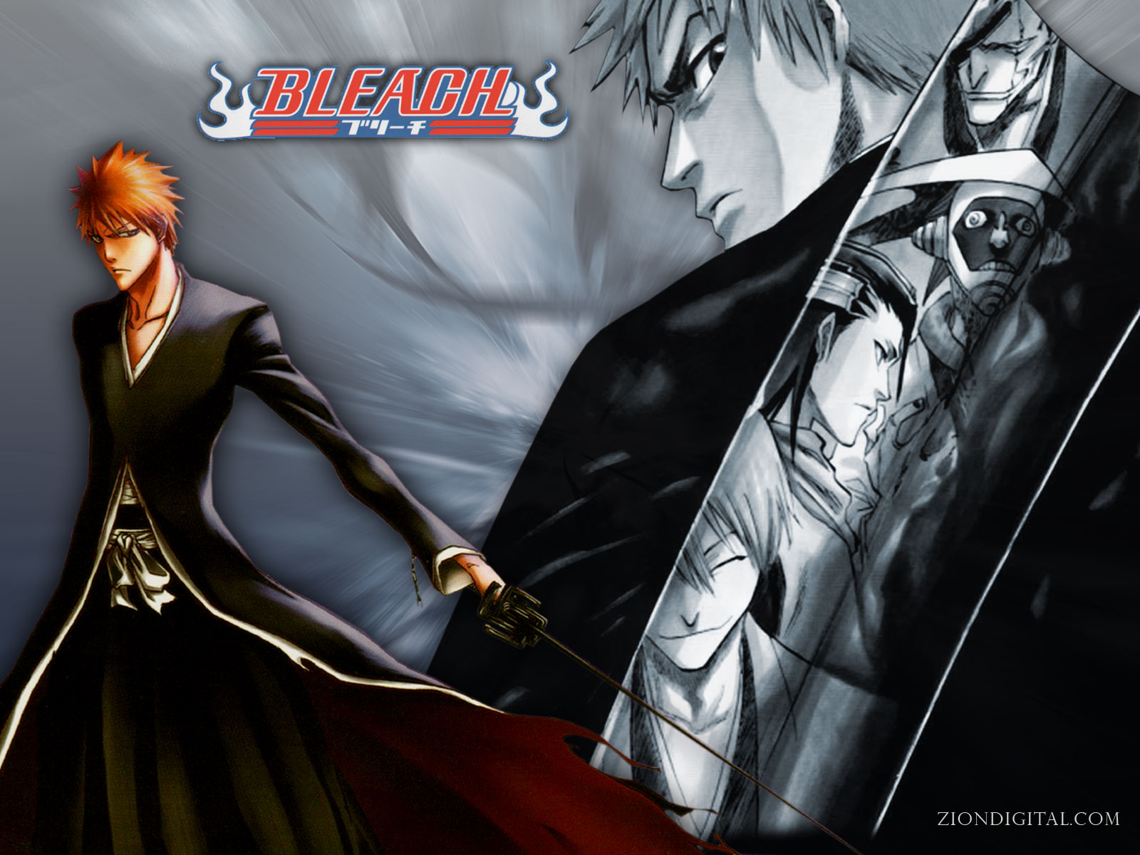 Anime Cartoon 2014: Bleach Anime