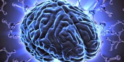 Kebiasaan - Kebiasaan Buruk Yang Bisa Merusak Otak