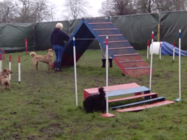 Oscar and ramps and mud