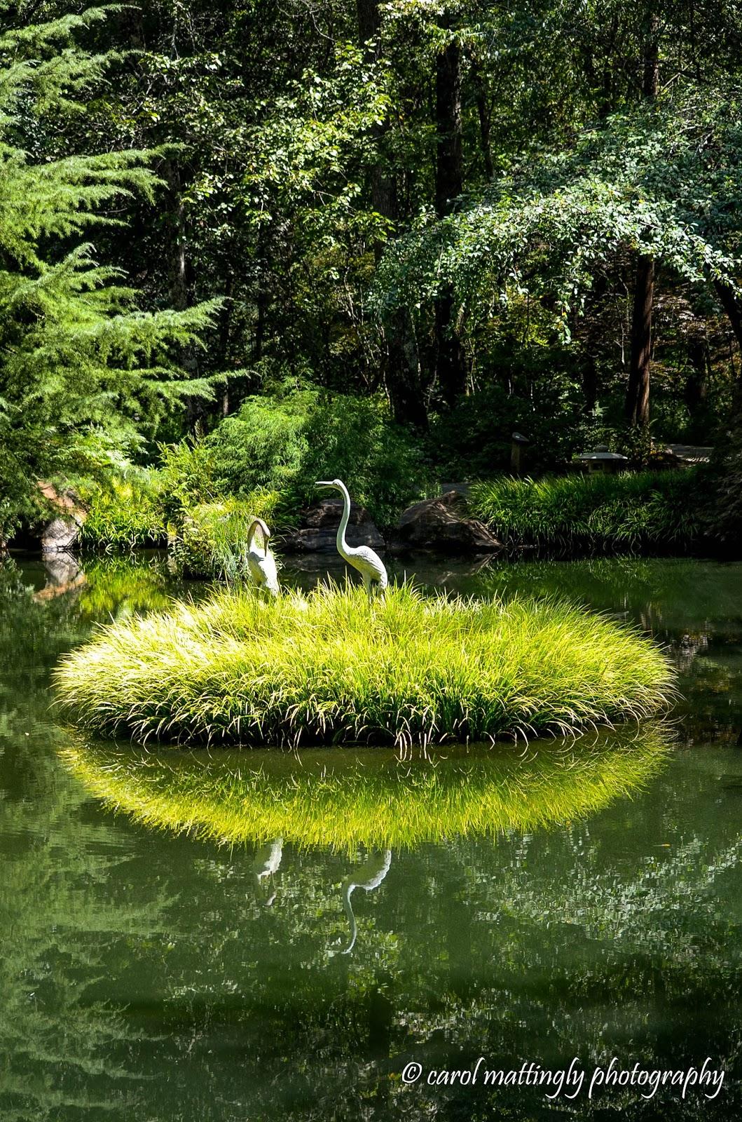 Carol Mattingly Photography: Japanese Gardens, Gibbs Gardens ...