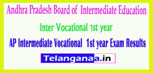 AP Intermediate Andhra Pradesh Inter Vocational 1st year Exam Results 2018