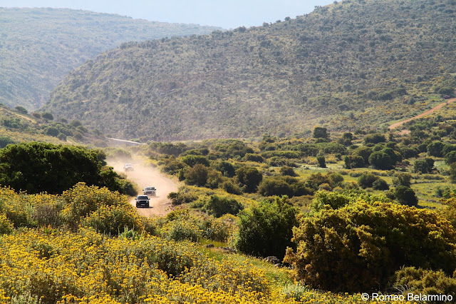 Acropolis Rally Road Tripology Adventures Off-Road Trip Central Greece