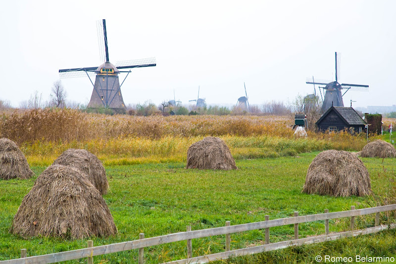 Kinderdijk Windmills and Haystacks Netherlands Day Trips from Amsterdam or Rotterdam