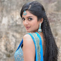 Vimala raman hot images in saree