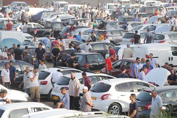 ببلجيكا-أسواق-السيارات-القديمة-للبيع-وشراء