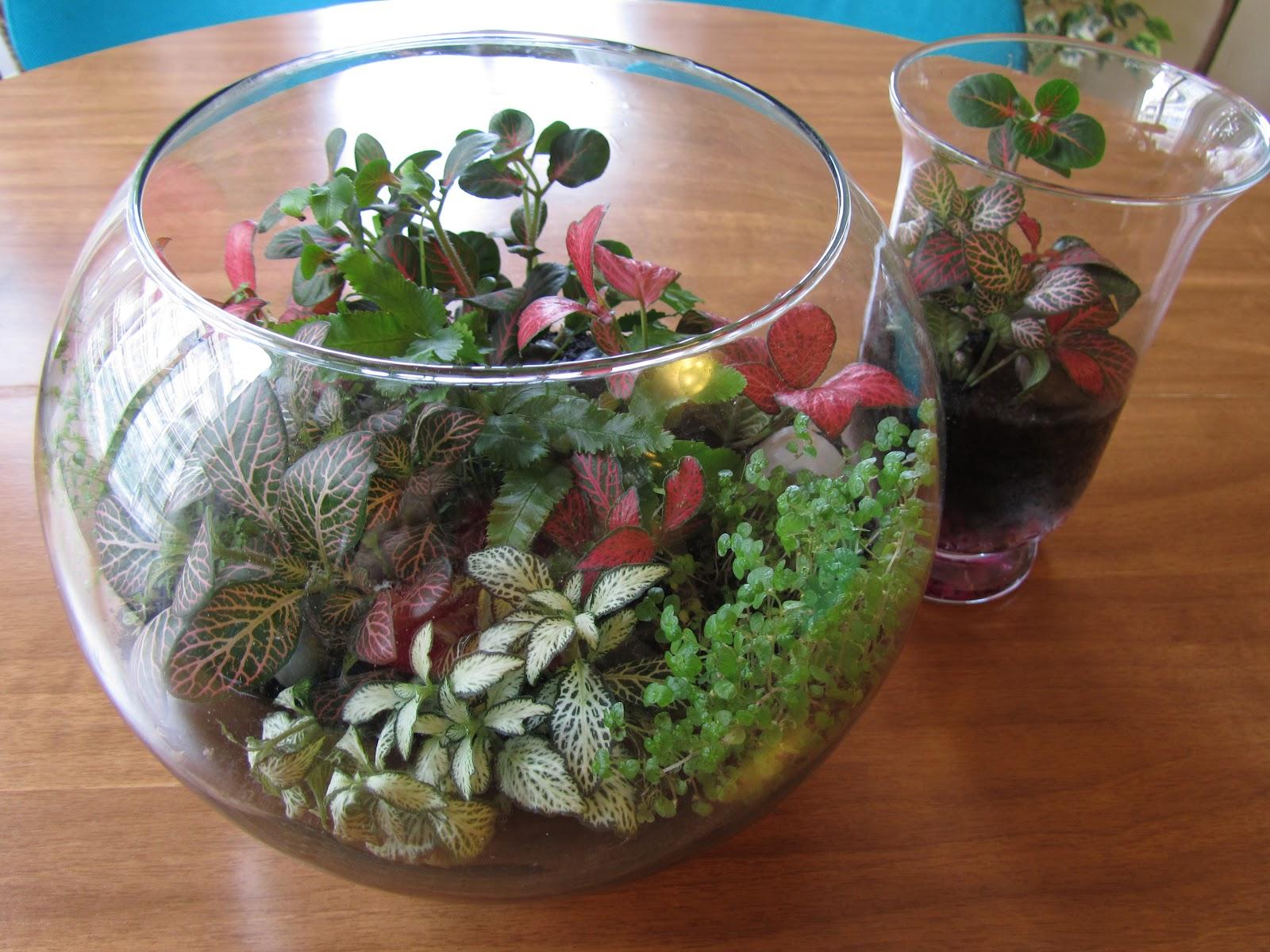 Pecera con plantas artificiales adentro.
