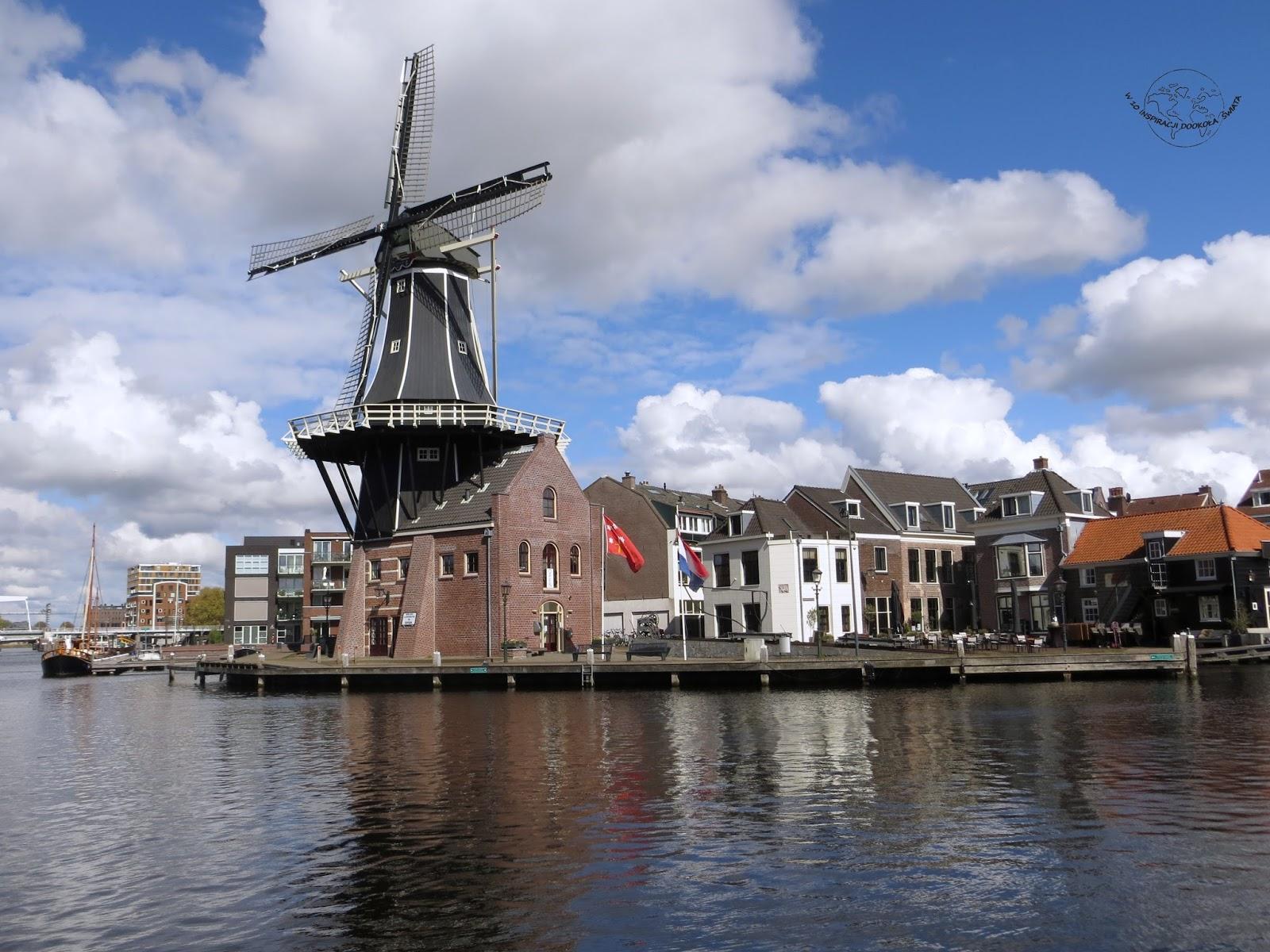 Co warto zobaczyć, zjeść i czego doświadczyć w Holandii?