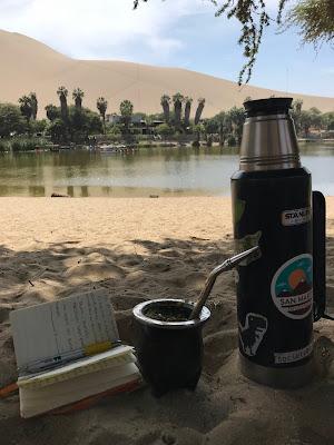 mate y lectura en el oasis