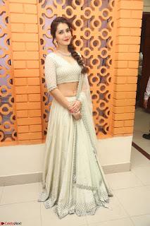 Raashi Khanan looks stunning in Crop Top Deep neck Choli Ghagra Transparent Chunni WOW ~  Exclusive Celebrities Galleries 061.JPG