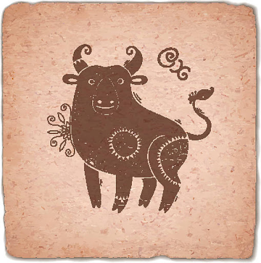 Ox Image