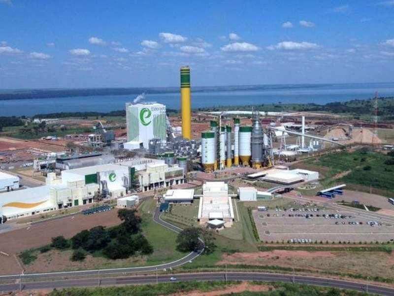 Eldorado atinge produção de 730 mil/t de celulose em Três Lagoas