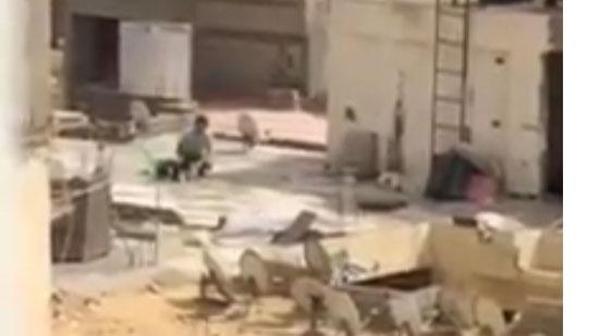 فيديو لمراهق يقوم بتعذيب كلبه