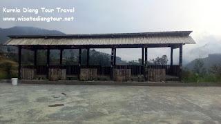 tempat melihat pemandangan alam di dqiano