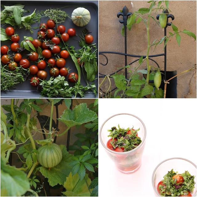 wolkenfees k chenwerkstatt hochbeet impressionen sommer bis herbst und tomatensalat im glas. Black Bedroom Furniture Sets. Home Design Ideas