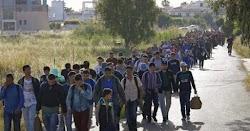 Τη δημιουργία 20 νέων κέντρων φιλοξενίας προσφύγων φαίνεται να σχεδιάζει η κυβέρνηση. Σύμφωνα με δημοσίευμα εφημερίδας, θα πρόκειται για δομ...