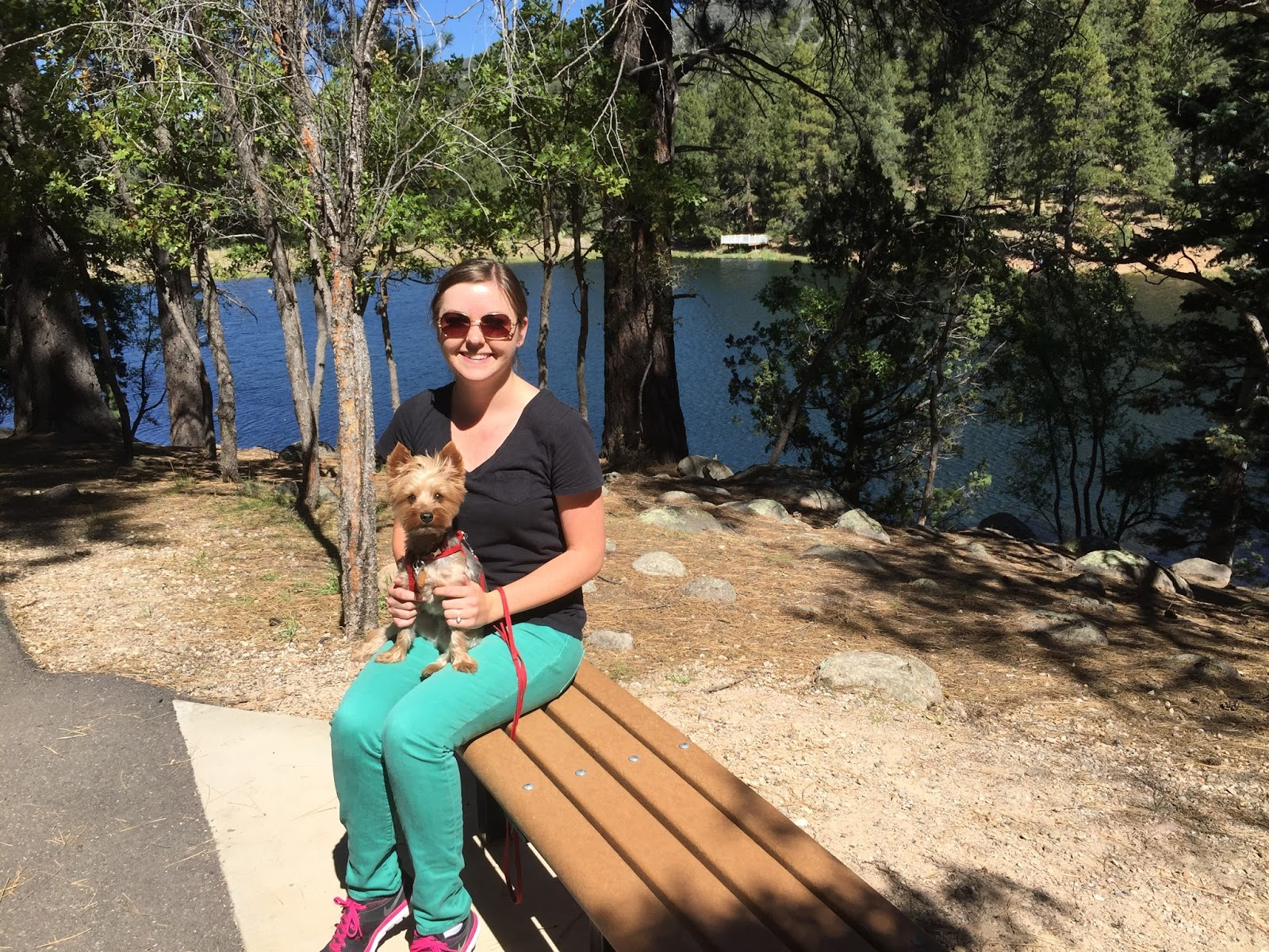 Southern Utah Attractions: Pine Valley: Dixie National Forest