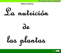 http://cplosangeles.juntaextremadura.net/web/edilim/tercer_ciclo/cmedio/las_plantas/la_nutricion_de_las_plantas/la_nutricion_de_las_plantas.html