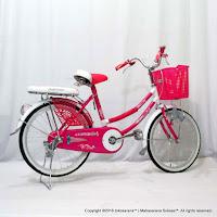 20 Inch Evergreen R1 Butterfly City Bike