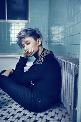 Mereka debut dengan mengeluarkan album mini  Profil, Biodata Trouble Maker (Kpop)