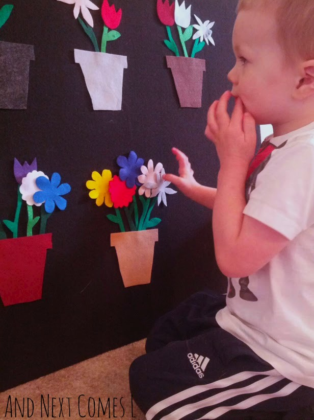 Counting flowers on the felt board from And Next Comes L
