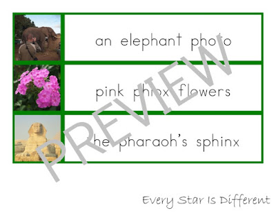 Montessori-inspired Advanced Language Sentence/Phrase and Picture Match Ups