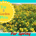 Top 5 Garden Picks for Spring