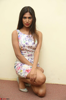 Nishi Ganda stunning cute in Flower Print short dress at Tick Tack Movie Press Meet March 2017 096.JPG