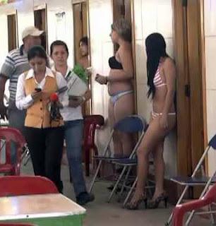 pimpin pesu escort slovakia