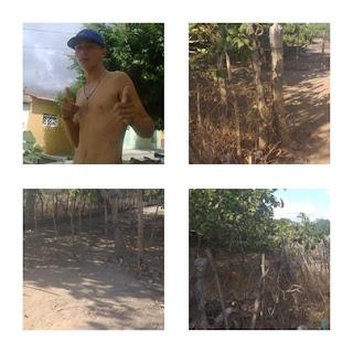Jovem é encontrado morto ao lado de uma cerca, em Jaçanã