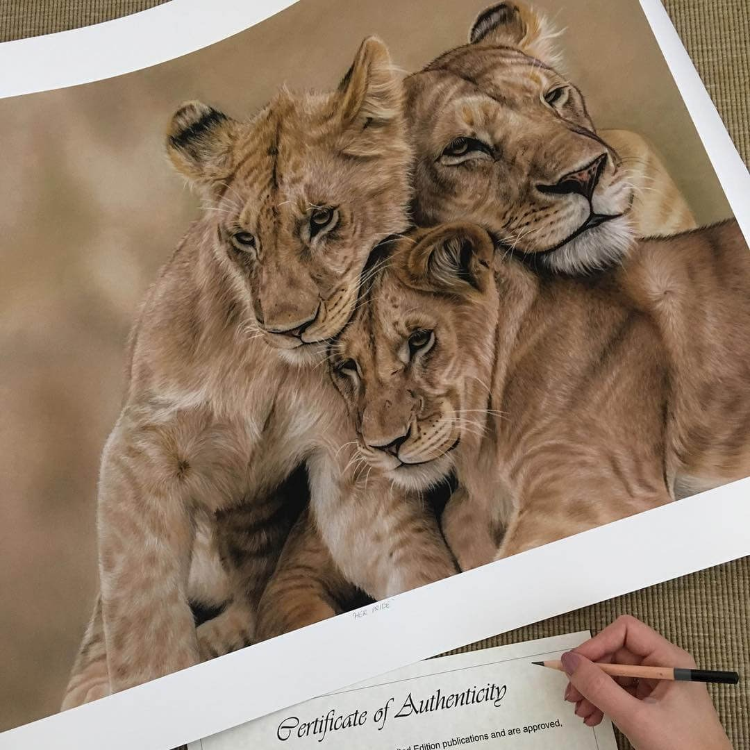 10-Baby-Lions-and-Mother-Danielle-Fisher-Realistic-Animal-Portrait-Pastel-Drawings-www-designstack-co
