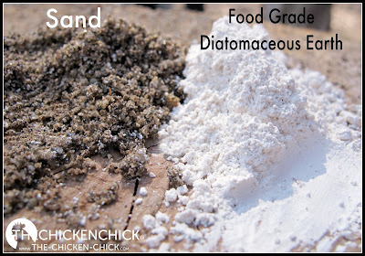 Food grade diatomaceous earth is a fossilized mineral dust with microscopic, razor-sharp edges that acts as a mechanical insecticide, slicing into insects' bodies, dehydrating them to death. Regular exposure to diatomaceous earth is a health hazard to chickens since, when inhaled, its crystalline silica particles adhere to and scar their lung tissue. Diatomaceous earth loses its effectiveness when wet, therefore cannot de-worm chickens, ie: DE cannot eliminate a worm overload from the digestive tract of a chicken mechanically. While there are trace minerals in DE, there are other, much safer, natural sources of trace minerals for chickens to consume without the respiratory health risk DE poses.