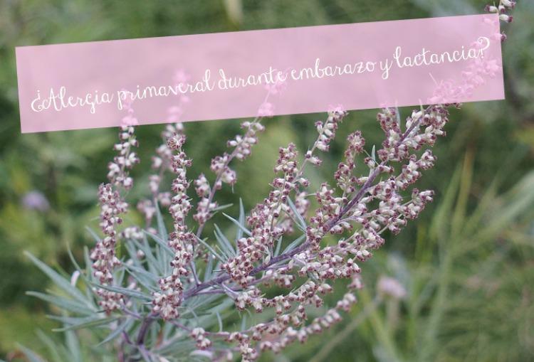 alergia primaveral embarazo y lactancia