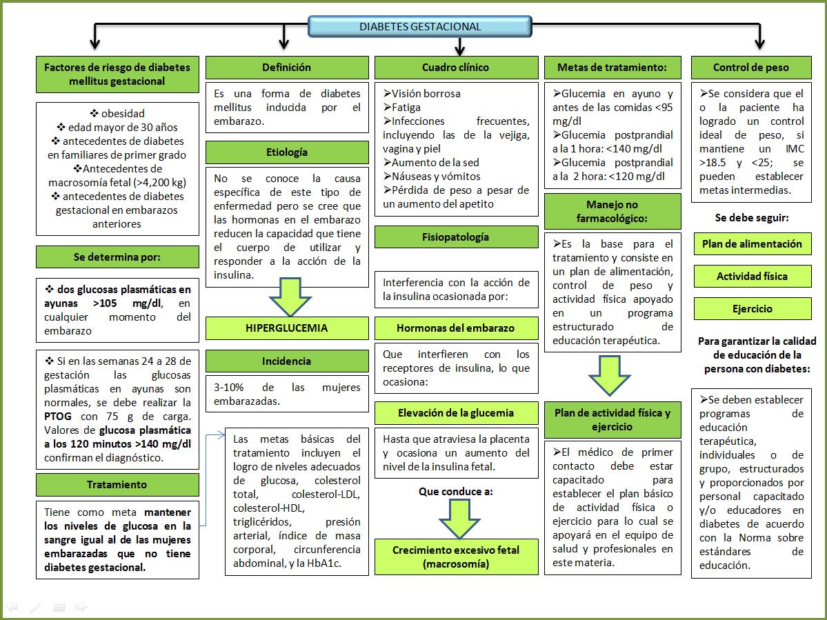 mapa conceptual fisiopatologia diabetes