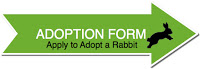 Rabbit Adoption Application Form