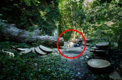 TKI Ilegal Malaysia Asal Pulung Ponorogo Tewas Tertimpa Pohon Saat Bekerja
